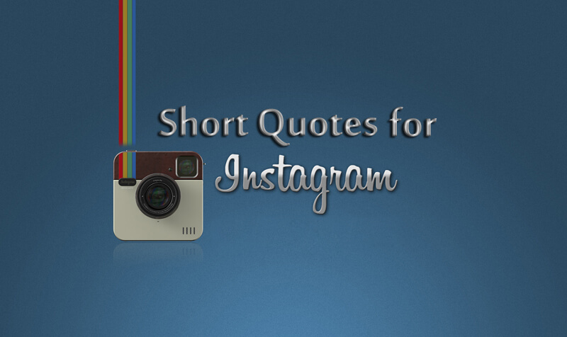 Cool Status For Instagram Generate Status Enchanting Good Quotes For Instagram Bio
