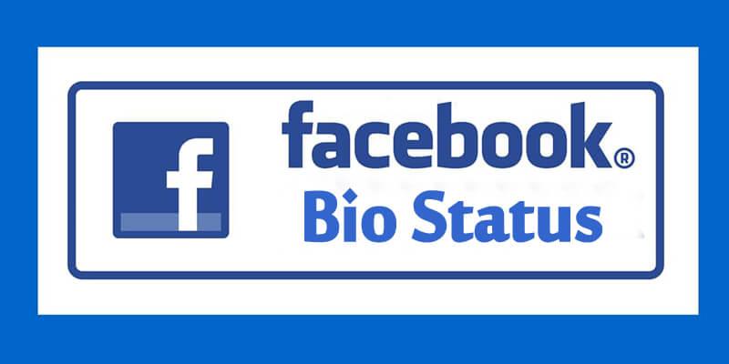 Bio Status for Girls for Facebook