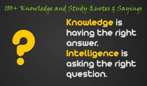 100+ Knowledge and Study Quotes & Sayings
