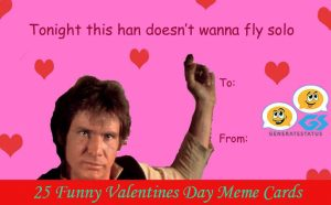 25 Funny Valentines Day Meme Cards