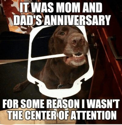 Funny Anniversary Memes For Everyone