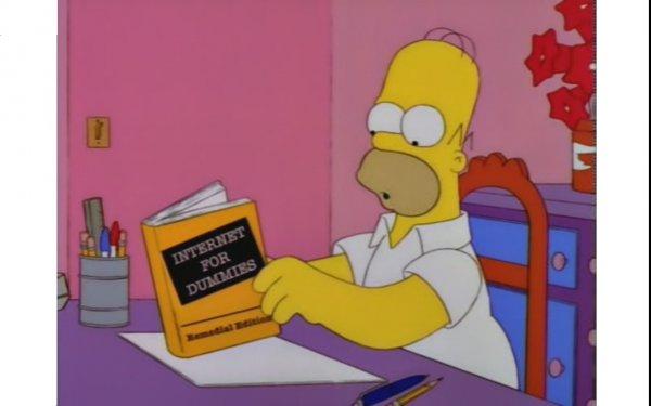 Computer Homer Meme