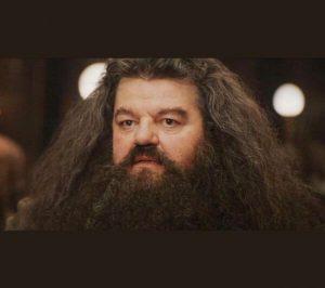 Hagrid Meme