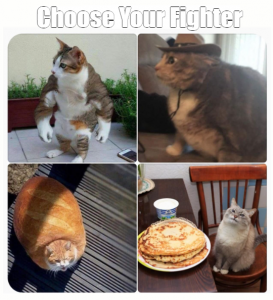 Choose Your Fighter Meme