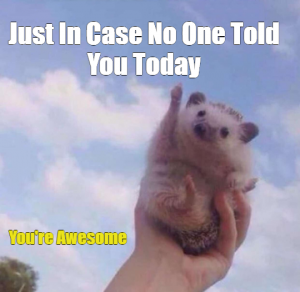 You're Awesome Meme